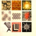 g-mosaico-detalle