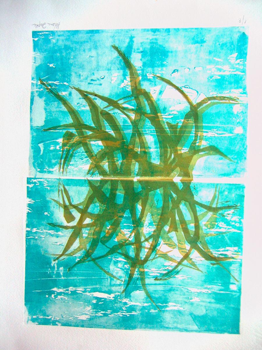 planta-acuatica