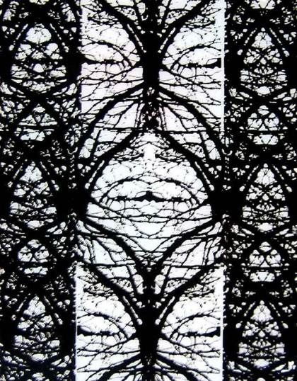 fc-redes-de-vida-formando-una-vidriera--serigrafia-s-metacrilato,-caja-con-luz-90X60-CMc