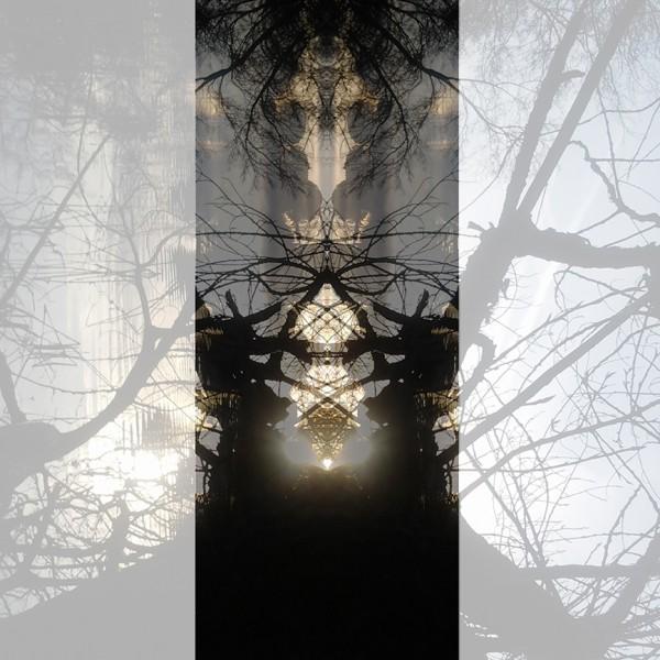 columna central de otra simetría atardecer copia bja