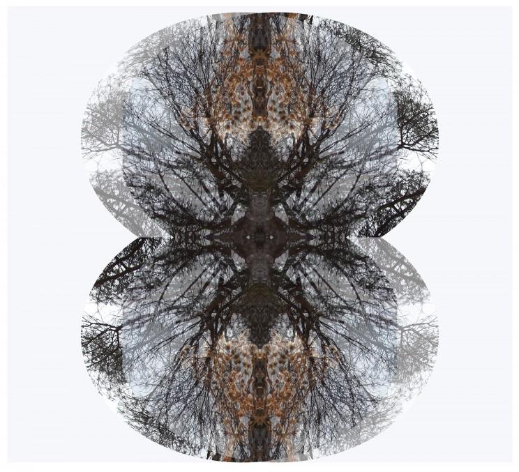 copas formando dos ovalos-copiamediaresolución